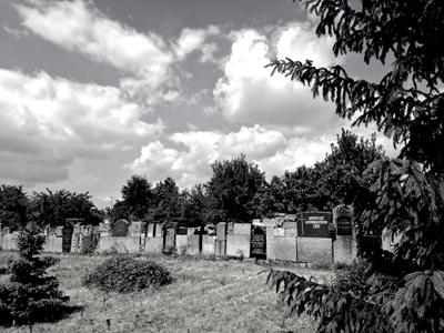 Friedhof - Trauerfallbegleitung Dr. Gesine Palmer